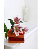 Towel, Bathroom, Lily, Hygiene