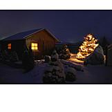 Garden, Cabin, Christmas tree