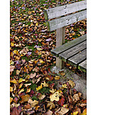 Autumn, Autumn Leaves, Bench
