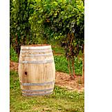 Vintage, Vineyard, Barrel, Wine barrel, Oak barrel