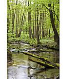 Schlaubetal, Schlaube, Schlaube valley nature park