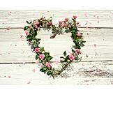 Heart, Flower