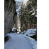 Footpath, Snowy