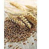 Grain, Wheat, Grain