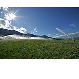Agriculture, Watering, Aquifer