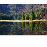 Lake, Obersee, Lunz lake