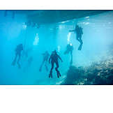 Diver, Diving, Diving