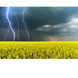 Thunderstorm, Lightning, Storm