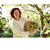 Woman, Apple harvest