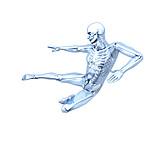 Martial Arts, Medical Illustrations, Glass Man