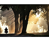 Sunlight, Motorcycle, Road, Motorcycle Tour, Fog