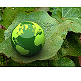 Environment Protection, Ecologically
