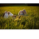 Enjoyment & relaxation, Meadow, Summer