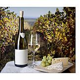 Cheese, Vineyard, White wine
