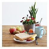 Breakfast, Toast, Balanced