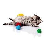 Fun & Games, Kittens, Ball Of Wool