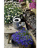 Garden, Watering Can, Rural Scene