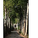 Alley, Florence, Boboli garden