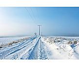 Winter, Winter Landscape, Snow
