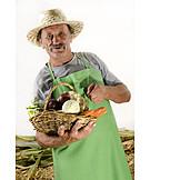 Agriculture, Harvest, Farmer, Harvesting, Basket