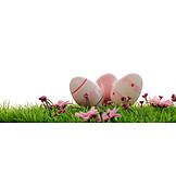 Easter, Easter Egg, Easter Celebration, Easter Decoration