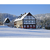 Winter, Timbered