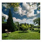 Garden, Allotment
