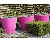 Garden, Flower Pot, Gardening, Landscape Gardening