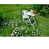 Garden, Flower meadow, Garden furniture
