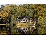 House, Forest, Autumn