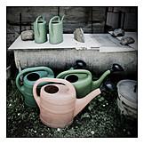 Garden, Watering Can, Watering