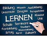 School, Learning, Studies, Training