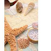 Holiday & Travel, Maritim