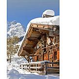 Snowy, Hut