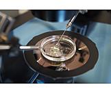 Research, Laboratory, Artificial Insemination