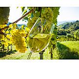 Wine glass, Grapes, Winetasting, White wine