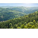 Czech republic, Central mountains, Bohemian forest