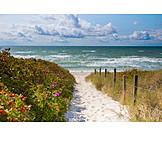 Footpath, Beach, Baltic sea, Dune