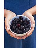 Forest fruit, Harvest, Blackberries