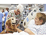 Boy, Hospital, Dog, Therapy Dog