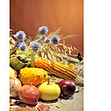 Fruits, Still Life, Thanksgiving, Harvest