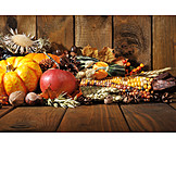 Autumn, Thanksgiving, Harvest