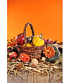 Harvest Festival, Thanksgiving, Autumn Decoration