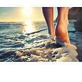 Sea, Feet, Sandpiper