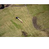 Field, Aerial View, Cabin, Alp