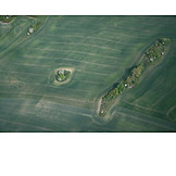 Field, Aerial View, Green Area