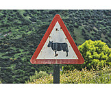 Traffic Sign, Animals, Cattle Drive