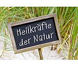 Heilkraft, Naturheilkunde