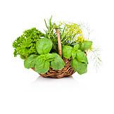 Spices & Ingredients, Basket, Herb