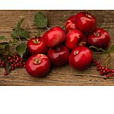 Harvest, Red apple